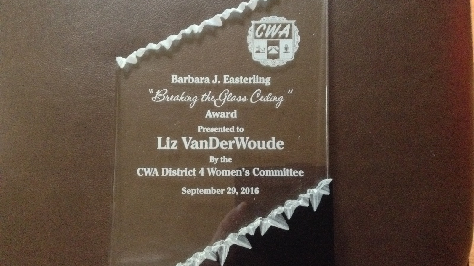 Image in support of: It Is With Great Sadness To Announce Liz VanDerWoude Retired President Of CWA Local 4250/CTU #16 Chicago, Succumbed To Cancer After A Valiant Fight On Sunday, September 13, 2020